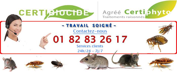 Deratisation Mery sur Oise 95540